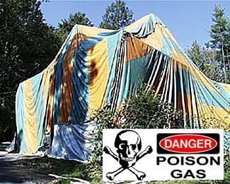 Prevent Family Deaths – Seek Non Chemical Termite Treatment